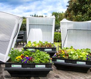 Vege Pods Garden Kits